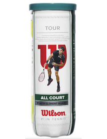 Wilson All Court (can of 3)
